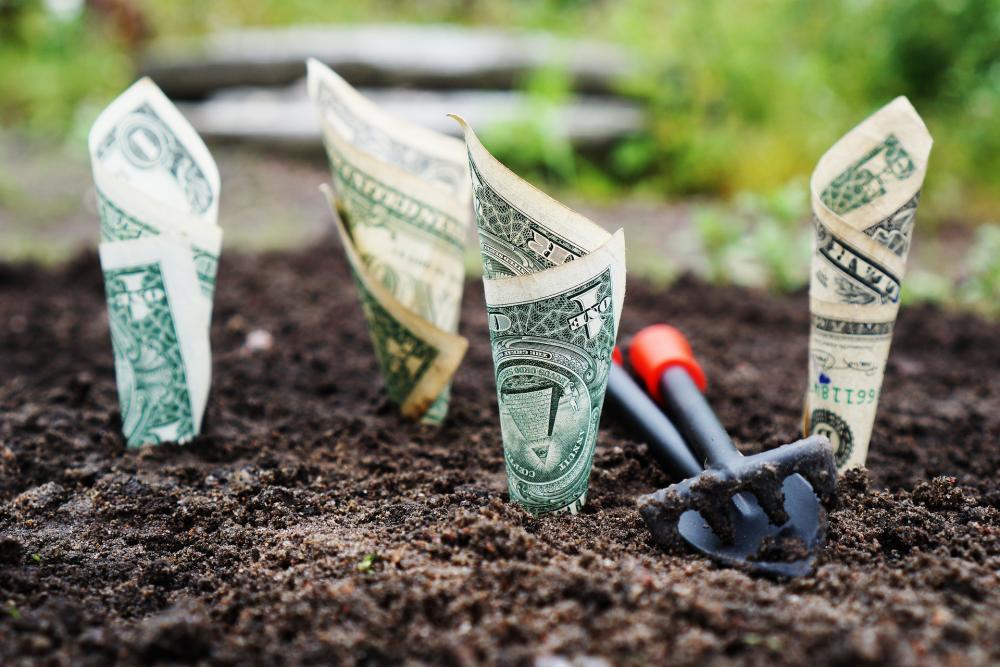 10 idées de placements ou d'investissements alternatifs