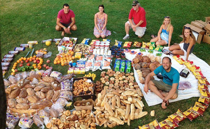 Le poulailler: la solution écologique contre le gaspillage alimentaire