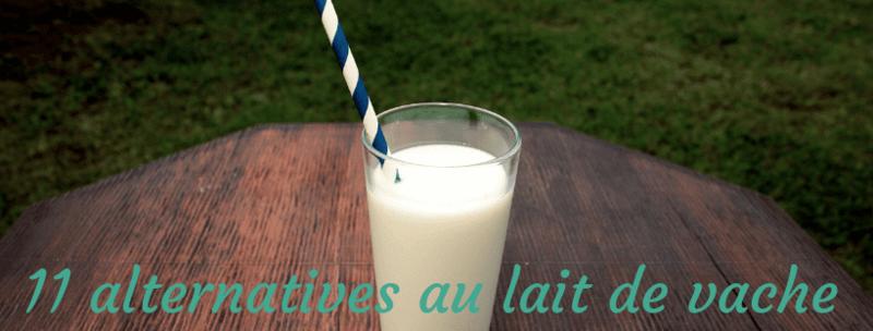 11 alternatives au lait de vache