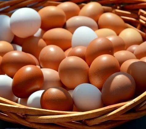 12 substituts aux œufs à tester en cuisine