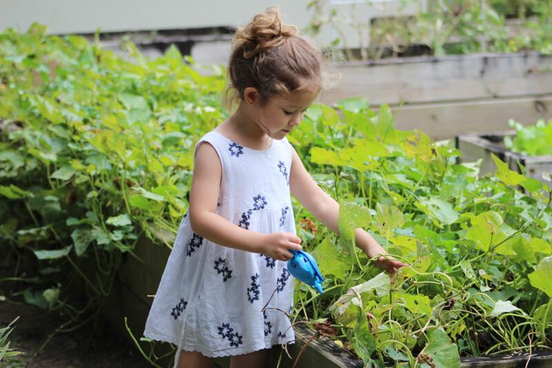 Expliquer l'écologie aux enfants