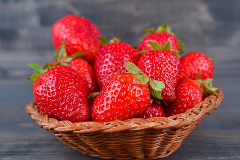 Fruits et légumes de saison bio