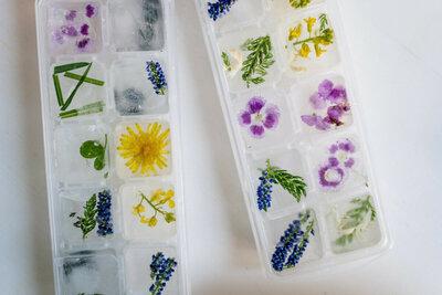 DIY: préparer des glaçons avec des fleurs comestibles