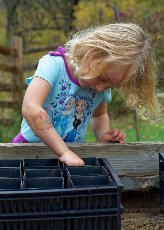 Les actions à mettre en oeuvre pour sensibiliser les enfants à l'écologie