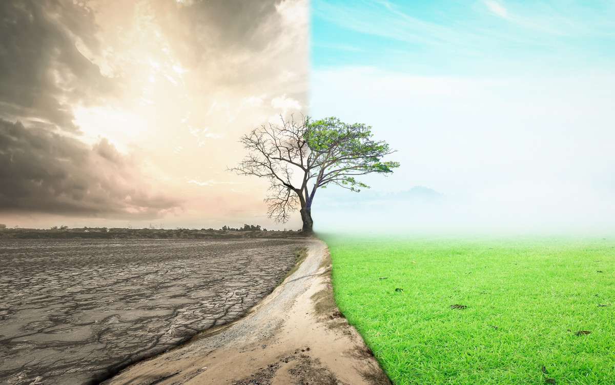 Êtes-vous prêts à renoncer à certaines choses pour sauver la planète?