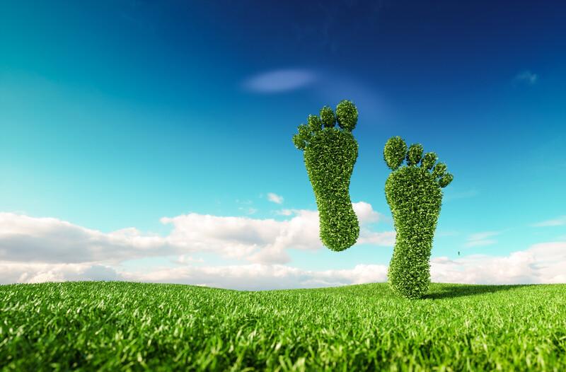 Comment réduire son empreinte écologique?