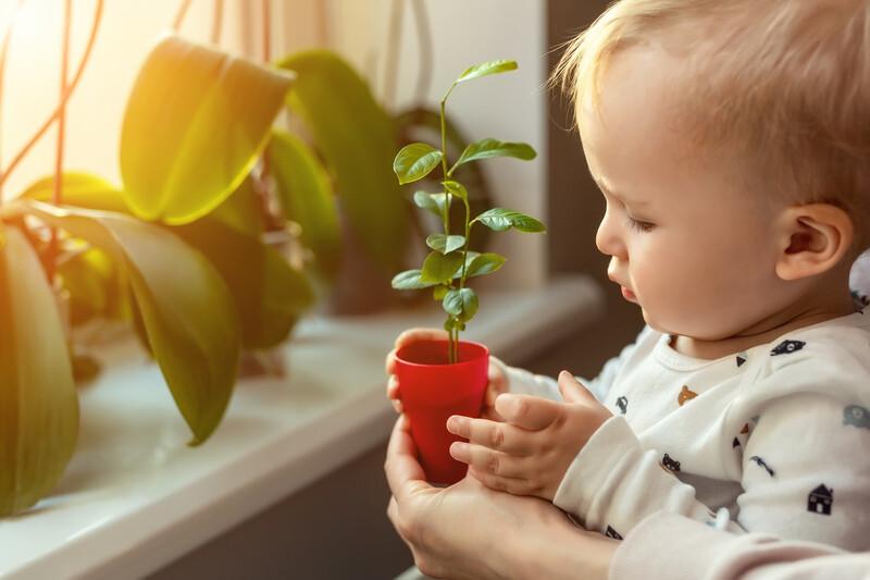 Adopter le mode Zéro Déchet avec un bébé