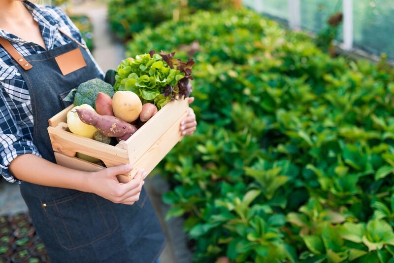 Manger local : 5 arguments pour se lancer!