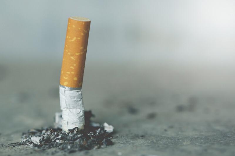 Un cendrier à base de champignons capable de transformer les mégots de cigarettes en biomatériau