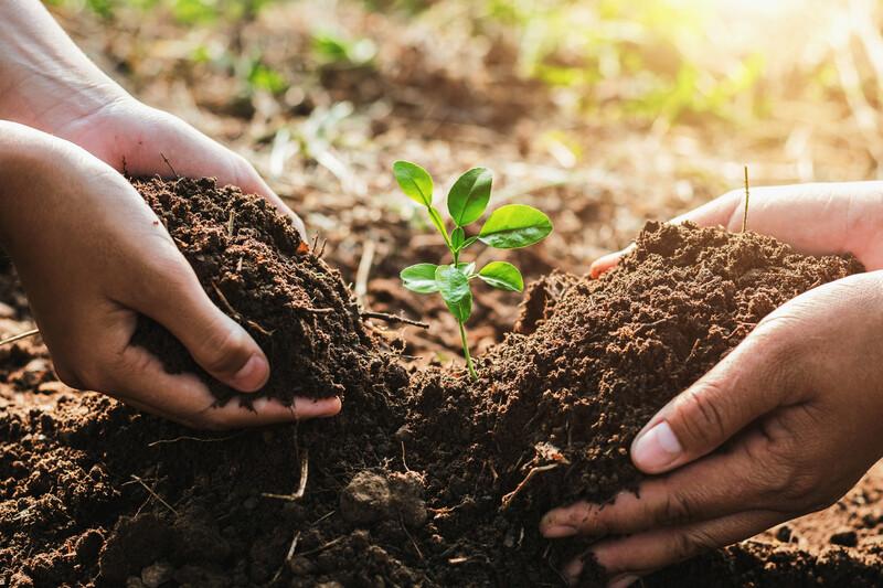 «On est prêt»: 150 personnalités vont multiplier les défis en faveur de l'environnement du 9 au 19 décembre