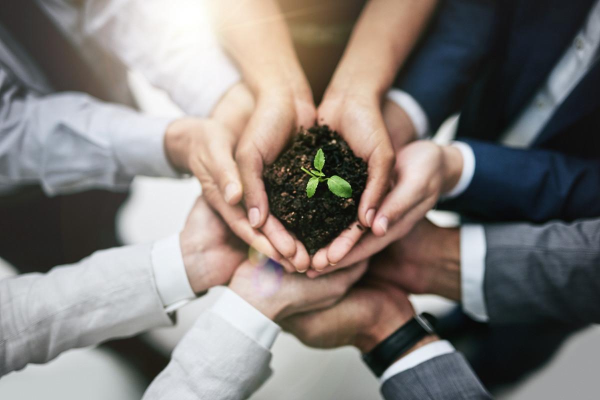 Organiser des éco-challenges et favoriser la prise d'initiatives écolos en entreprise