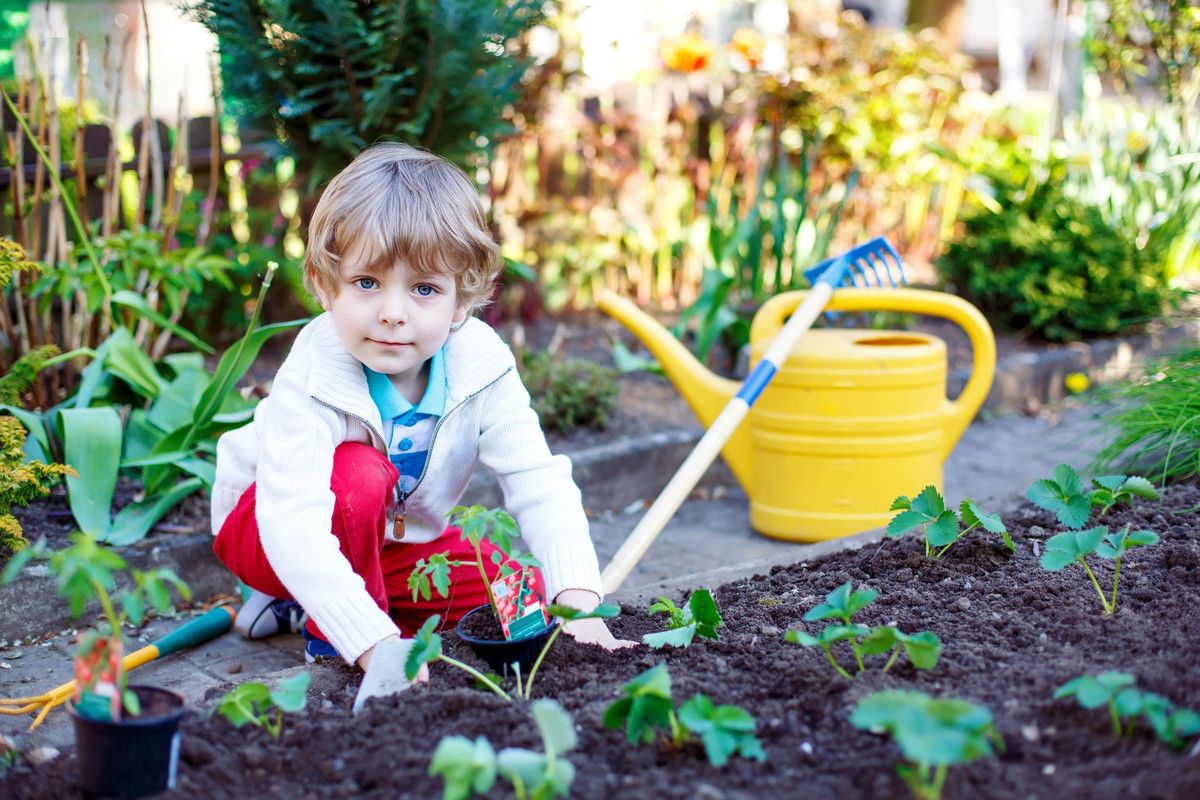 Comment apprendre à jardiner aux enfants?
