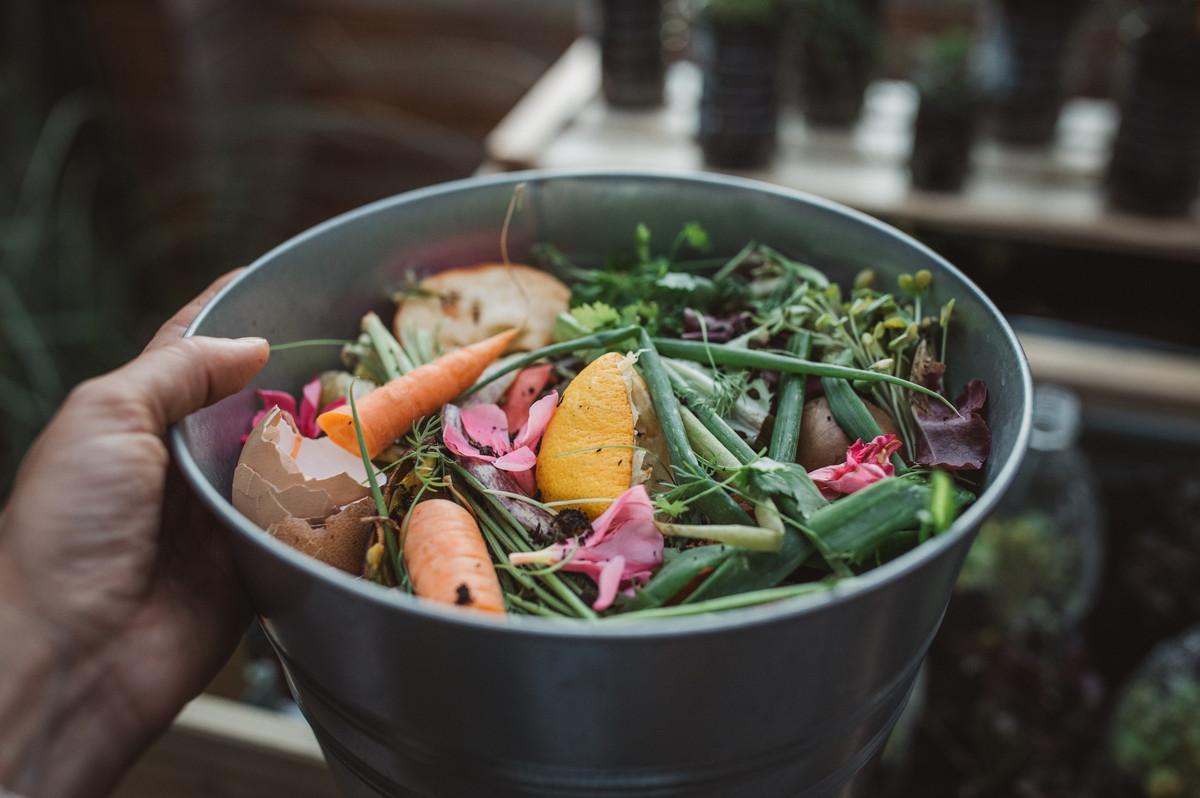 6 conseils pour éviter les moucherons dans son compost