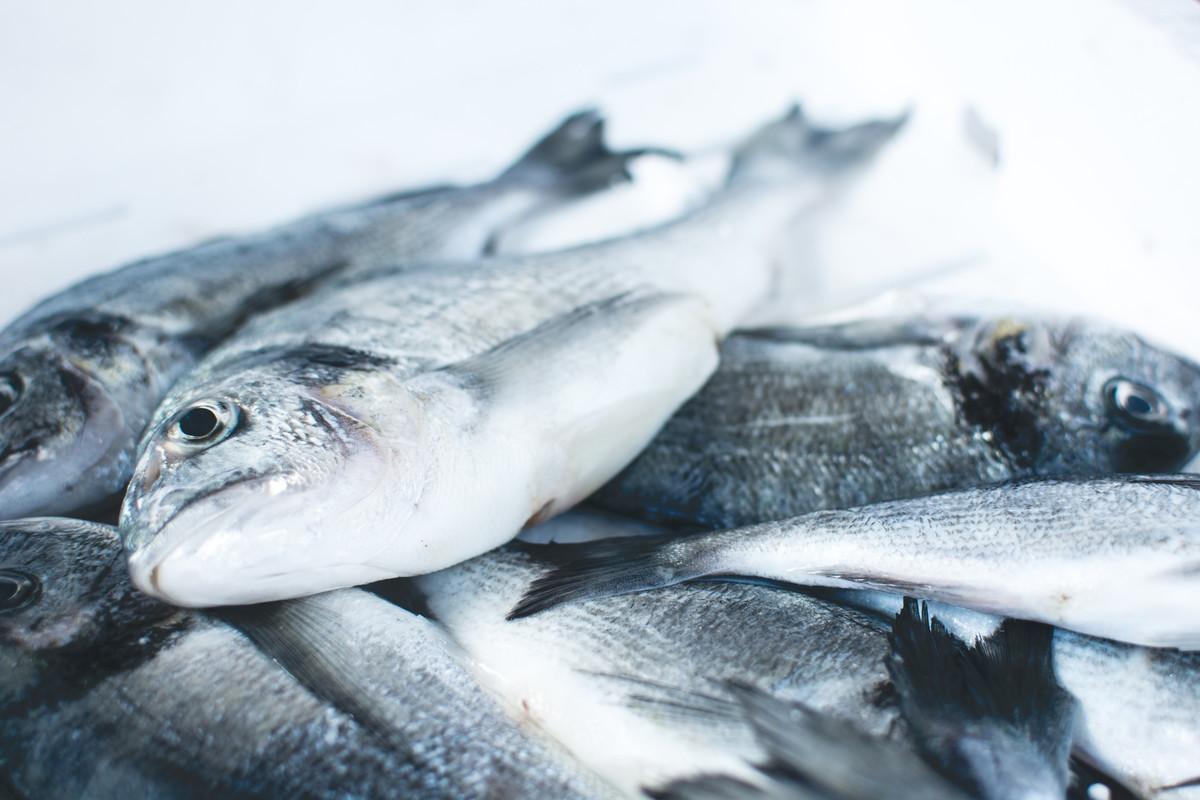 Une étudiante anglaise transforme les déchets de poisson en plastique biodégradable