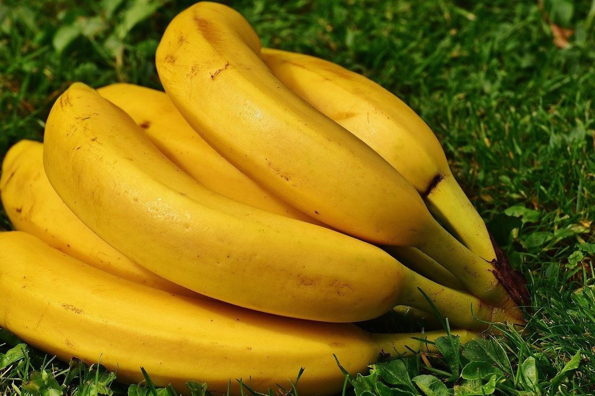 DIY: comment faire de l'engrais avec des peaux de banane?