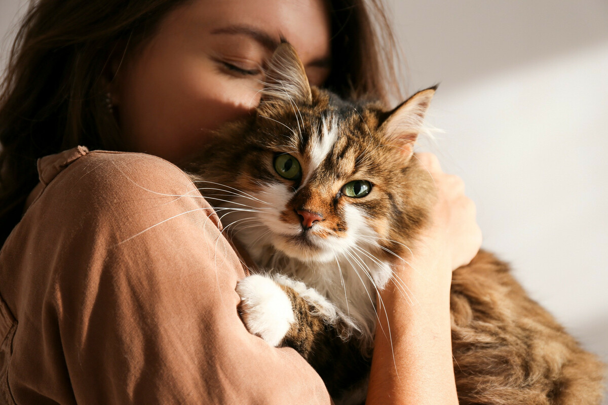 DIY : Fabriquer un antipuce naturel pour son chat
