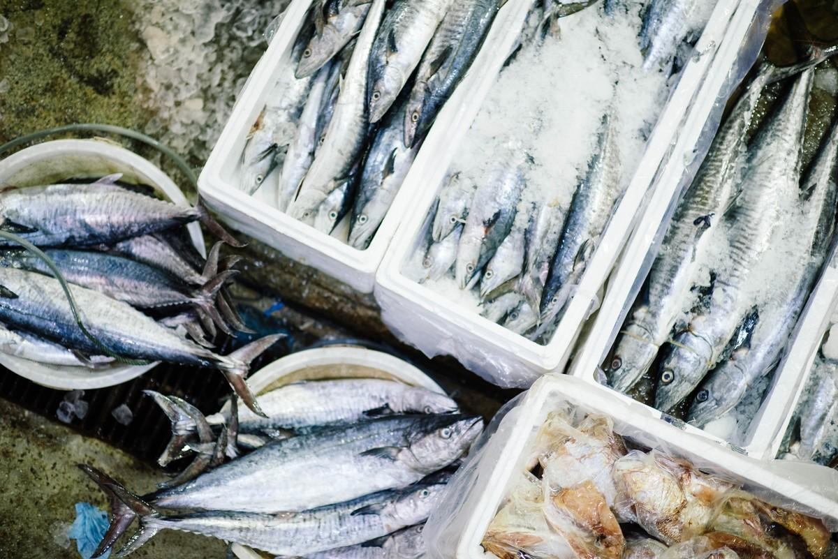 Plastique à base de peaux de poisson