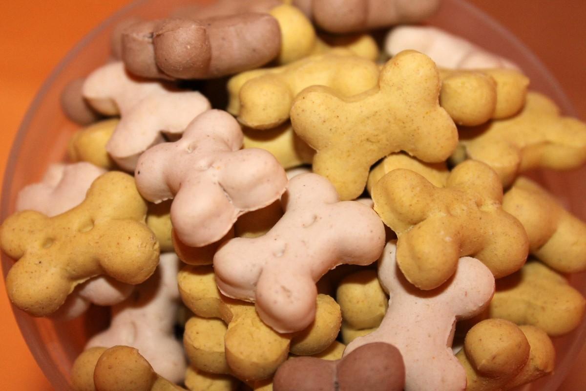 Biscuits pour chien DIY
